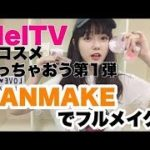 CANMAKEでフルメイク!【MelTVのコスメ使っちゃおう第1弾】 | Japanese Makeup Guide
